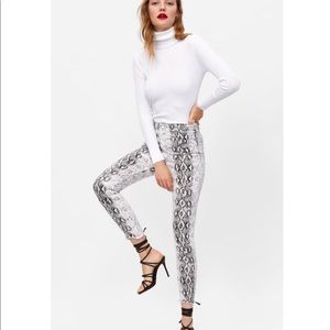 Zara Snake Print High Waisted Pants